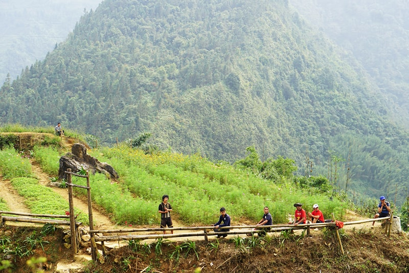 Ta Van village in autumn, natural beauty with terraced rice fields, waterfalls and ethnic people's life, Lao Chai, Sapa, Vietnam
