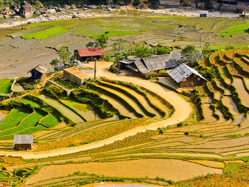 Ta Van village rice terraced fields, Sapa
