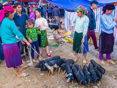 The lui market is the busiest activity of ethnic people in Ha Giang every week