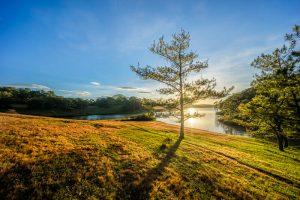Da Lat Countryside Vietnam
